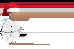 yyt-logo
