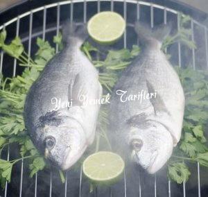 Hangi Balık ve Meze ile Hangi Baharat Kullanılabilir