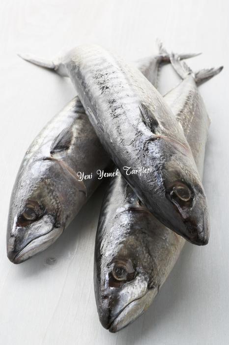 Balık Satın Alırken Dikkat Edilecek Noktalar